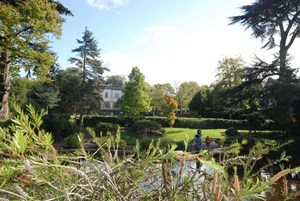 Rear view of the pond in Walpole Park