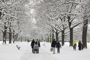 people walking through a snow covered park lined with trees